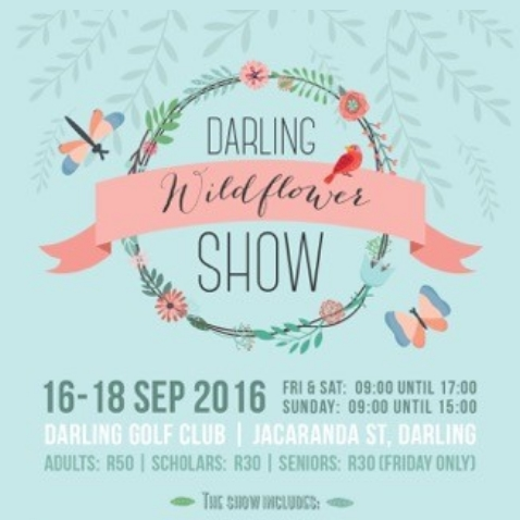 The 99th Darling Darling Wildflower Show
